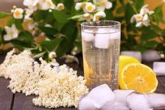Healthy elder flower lemonade Stock Images