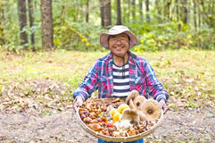 Healthy elderly Stock Photography