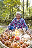 Healthy elderly Stock Image