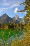 Healthy environment, austrian alps Royalty Free Stock Image