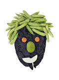 Healthy Face made with vegetables Stock Photography