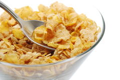 Healthy fiber cereal Royalty Free Stock Images