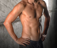 Healthy and fit torso of a muscular man Royalty Free Stock Photo