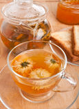 Healthy Flower Tea Royalty Free Stock Photos