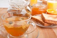 Healthy Flower Tea Royalty Free Stock Image