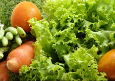 Healthy food. Fresh vegetables, source of energy and vitamins Royalty Free Stock Photo