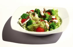 Healthy food. Served salad plate, tomato, mushrooms with broccoli and other veggies Stock Photography