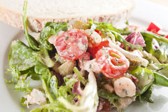 Healthy food. Prawn salad - steamed prowns, baby tomatoes, rocket salad, mushrooms and herbs- Dukan Diet Royalty Free Stock Photos