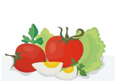 Healthy food. Vector illustration of the healthy food Royalty Free Stock Photos