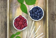 Fresh ripe blueberries and raspberries in two bowls. Healthy food,agriculture,harvest and fruit concept: fresh ripe blueberries and raspberries in two bowls on Stock Photography