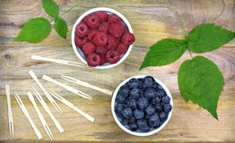 Fresh ripe blueberries and raspberries in two bowls. Healthy food,agriculture,harvest and fruit concept: fresh ripe blueberries and raspberries in two bowls on Royalty Free Stock Photos