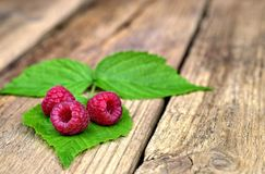 Three fresh raspberries on leaves. Healthy food,agriculture,harvest and fruit concept: three fresh raspberries on leaves and an old wooden background Stock Image