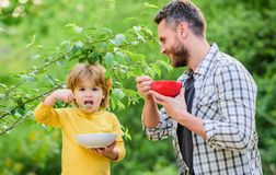 Free Healthy Food And Dieting. This Should Be Fine. Happy Fathers Day. Little Boy With Dad Eat Cereal. Family Bonds. Enjoying Stock Photo - 158880170