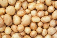 Healthy food, background. Potato Royalty Free Stock Photos