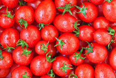 Healthy food, background. Tomato Stock Photography