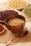 Healthy food. Black rice ,rice, millet, beans, goji wolfberry, and grind up those to make some kind of healthy food flour. It is a popular food in China, and royalty free stock images