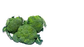 Healthy food broccoli isolated on white background. copy space, template. Healthy food broccoli isolated on white background. copy space, template Stock Images