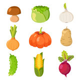 healthy food cartoon representing set Royalty Free Stock Images