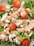 Healthy food close up. Green rocket salad with tomatoes onions beans and tuna fish Royalty Free Stock Images