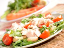 Healthy food close up. Green rocket salad with tomatoes onions beans and tuna fish Stock Images