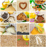 Healthy food collage Royalty Free Stock Images