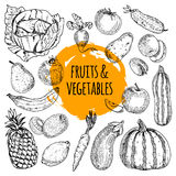 Healthy food collection hand drawn doodle Royalty Free Stock Image
