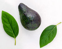Healthy food concept . Closeup fresh avocado and leaves on marbl Stock Images