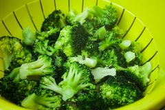 Healthy food concept with green broccoli vegetables. Top view of plastic bowl with vegetables. Full bowl of broccoli in closeup vi. Ew. Fresh and clean Stock Photos