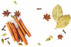 Healthy food concept Mix of organic spices star anise, cinnamon, bay and cardamom pods on white background royalty free stock photography