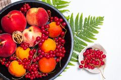 Healthy food concept Summer fruits Peach, apricot and red currant burry in pie pan stock images