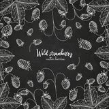 Healthy food design template with berries. Hand drawn frame with wild strawberry. Summer or autumn template on. Chalkboard. Great for label, design menu Royalty Free Stock Image