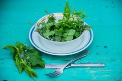 Wicker basket with fresh herbs. Healthy food. Detox. Organic nutrition. Salad with sorrel and mint with flowers Royalty Free Stock Photography