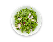 Healthy food. Diet salad made with radish, fresh lettuce and olive oil Stock Images