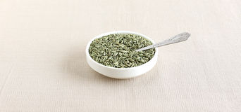 Healthy Food Fennel Royalty Free Stock Photo