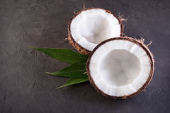 Healthy food. Fresh coconut with green palm leaves Stock Image