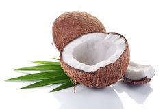 Healthy food. Fresh coconut with green palm leaves Royalty Free Stock Photo