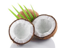 Healthy food. Fresh coconut with green palm leaves Stock Photos