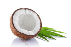 Healthy food. Fresh coconut with green palm leaves Royalty Free Stock Photography