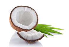 Healthy food. Fresh coconut with green palm leaves Royalty Free Stock Images
