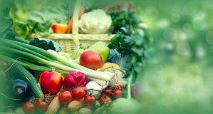 Healthy Food- Fresh Organic Seasonal Vegetables Stock Photo