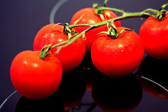 Healthy food: fresh red tomatoes Royalty Free Stock Photo