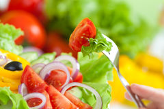 Healthy food fresh vegetable salad and fork. With tomatoes Royalty Free Stock Photos