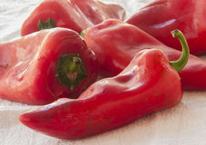 Healthy food. Fresh vegetables. Peppers Royalty Free Stock Photo