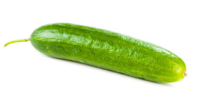 Healthy food. The green cucumber Stock Images