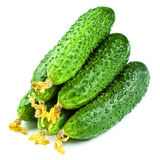 Healthy food. The green cucumbers isolated on white background Stock Photos