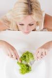 Healthy food green salad Royalty Free Stock Photo