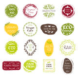 Healthy Food Hand Drawn Labels Royalty Free Stock Photo