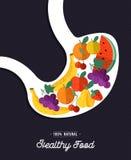 Healthy food: human stomach eating natural fruits royalty free illustration