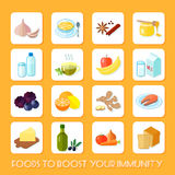 Healthy Food Icons Flat. Healthy food that boost your immunity icons flat set isolated vector illustration stock illustration