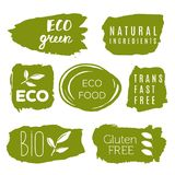 Healthy food icons, labels. Organic tags. Natural product elemen. Ts. Logo for vegetarian restaurant menu. Raster illustration. Low fat stamp. Eco product Stock Images